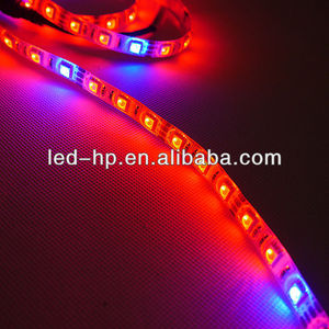 2014 5M 5050 RGB SMD Waterproof Flexible Strip Light 300 LED Flash 12V IP65
