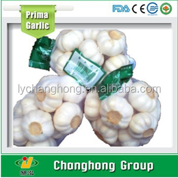 garlic 2017 new crop with lowest price