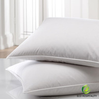 HIgh End Down Pillow in China