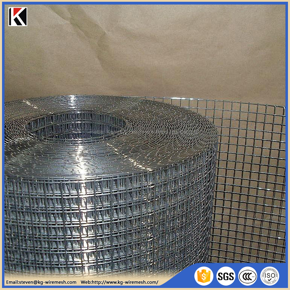 China professional 3x3 galvanized welded wire mesh panel / cheap aviary wire mesh / 20 gauge steel wire mesh