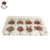 117*195*16mm Food Grade PET Animal Shape Chocolate Mold