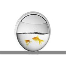 modern design oval factory price acrylic aquarium