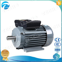 YL series 220V AC Electric Motor