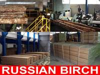 Russian Birch Wood