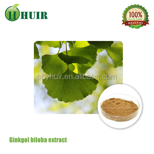 GMP factory supply ginkgo biloba extract, ginkgo biloba,ginkgo biloba capsule for medicine