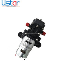 High quality 12v dc mini motors / water diaphragm pump with agriculture