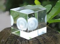 Dandelion Transparent Crystal Cube Creative Design 3D Laser Crystal Cube Room Decoration Gift For Friend