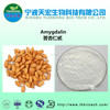 98% high quality natural amygdalin b17 extract/amygdalin powder 98% vitamin b17 amygdalin