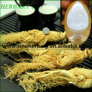 High quality Asian ginseng extract 20% ginsenoside UV