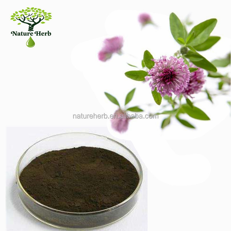 Hot Sales Powder Red Clover Extract For Female Menopause