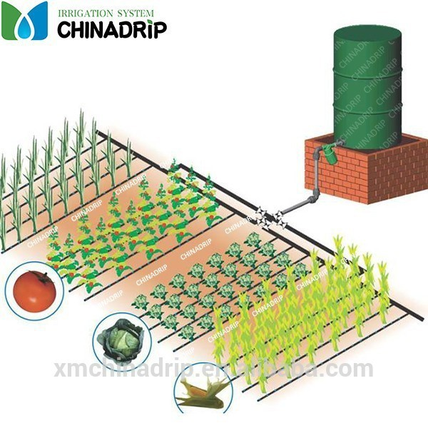 Garden or farm drip irrigation systems buy farm for Home garden drip irrigation design
