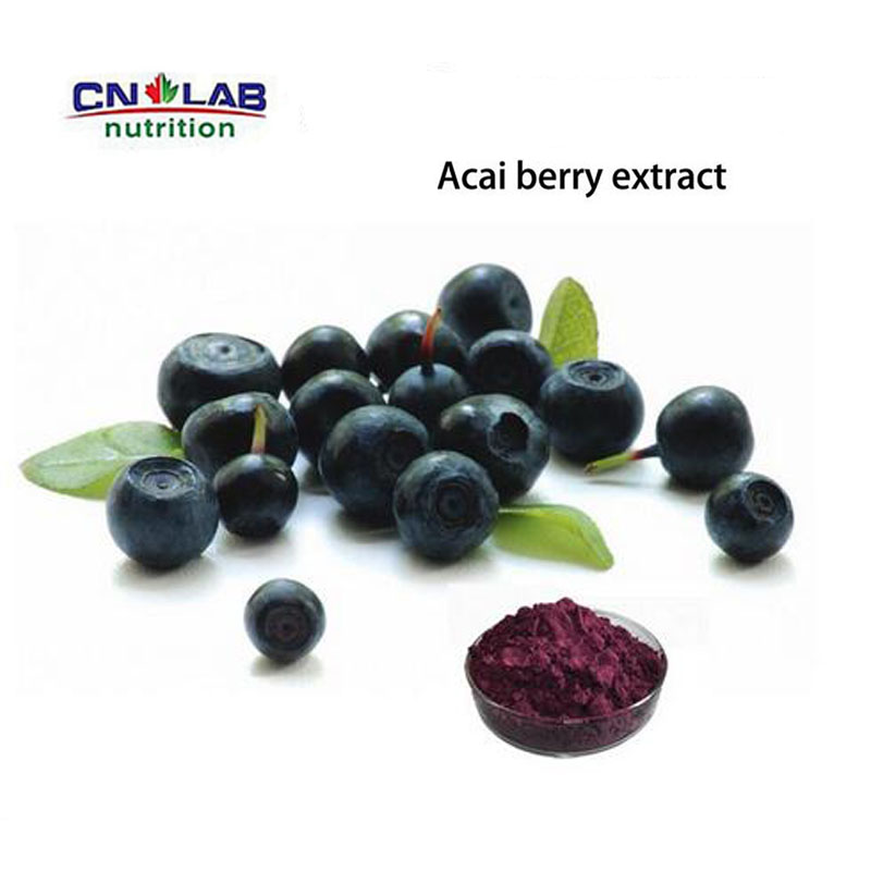 CN LAB Supply Nature acai berry juice smoothie/Acai extract 95% anthocyanin powder