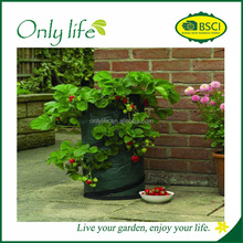 Onlylife PE durable Factory Outlet vegetable grow bag garden planter