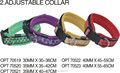 ORIENPET & OASISPET Pet adjustable collar fruit color Ready stocks OPT70519 Pet products