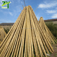 HOT ZY 1003 Bamboo Poles For