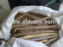 DRIED EEL FISH MAW