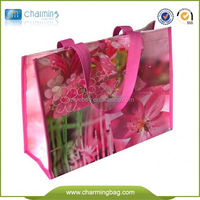 Eco-Friendly PP Woven Shopping Bags