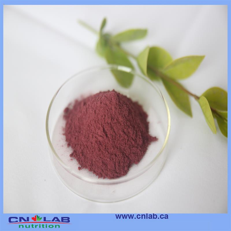 100% natural health benefit of acai berry for sale