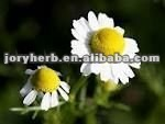 Natural Chamomile Flower Extract Powder