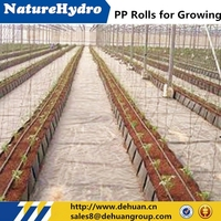 Planting strip used drip irrigation technology