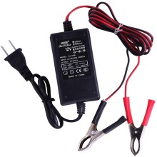 12v1A Power Adapter EU/AU/UK/US Plug 8.4v 18650 li-ion battery charger 24v lead acid battery charger