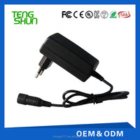 New Products Smart Wall Charger 12W,12V 1A 24V 0.5A Sealed Lead Acid Battery Charger
