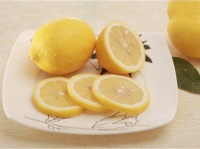 Fresh Lemon dirctly from production base