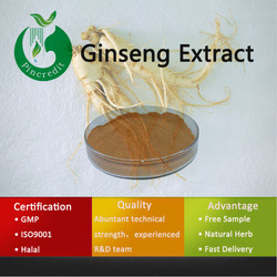 Ginseng Extract 2% 4% 7% 15% 30%/Panax Ginseng Root Extract