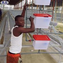 uganda poultry farm Automatic 3-tier 96 birds poultry layer cage/ layer chicken houses for sale