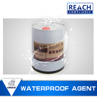 WP1359 Nano Waterproof Sealer Coating Material for stone construction weather ability and anti-efflorescence