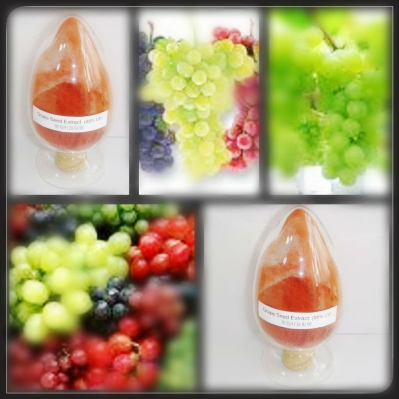 Top quality new style grape skin extract