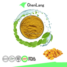 Hot Sale in Market Sea Buckthorn Extract Powder