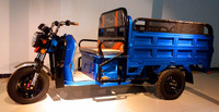 2016 NEW model of 3 wheels pedal electric cargo tricycles/cargo trike motorcycles.rickshaws for cargo 1100009