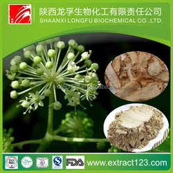 Factory Supply Dong Quai Extract , Angelica Sinensis Extract , Ligustilide