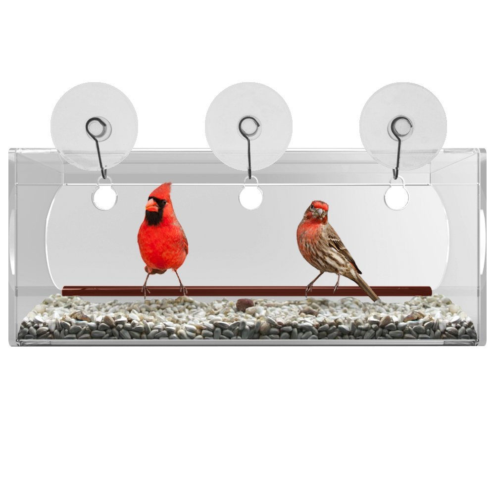Customized transparent acrylic bird feeder
