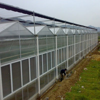Aluminum Greenhouse / Green House / Agricultural Greenhouses