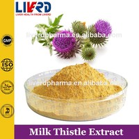 Health Benefits Product Milk Thistle Extract