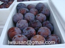 black plum from shaanxi