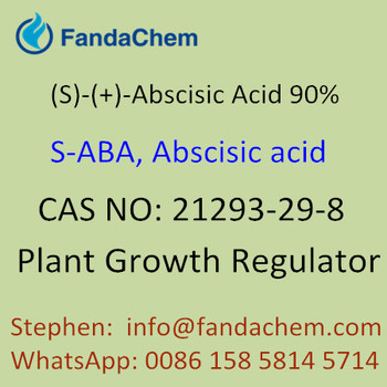 (S)-(+)-Abscisic Acid