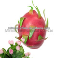 Plastic fruits pitaya for home decoration