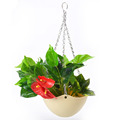 Plastic Self-Watering Hanging Planter with chains/Self-watering flower pot