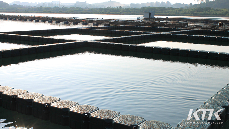 Wholesale stark high quality plastic floating dock