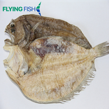 New coming seafood for sale frozen flat fish stock fish dried sea food