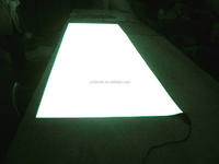 Newest ! Hottest!!The super bright electroluminescent sheets and panels/electroluminescent display panel