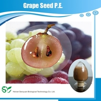 Manufacturers Supply Organic and Pure Grape Seed P.E. with Best Price