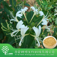 Natural Plant Extract Herb Flos Lonicerae extract Chlorogenic acid