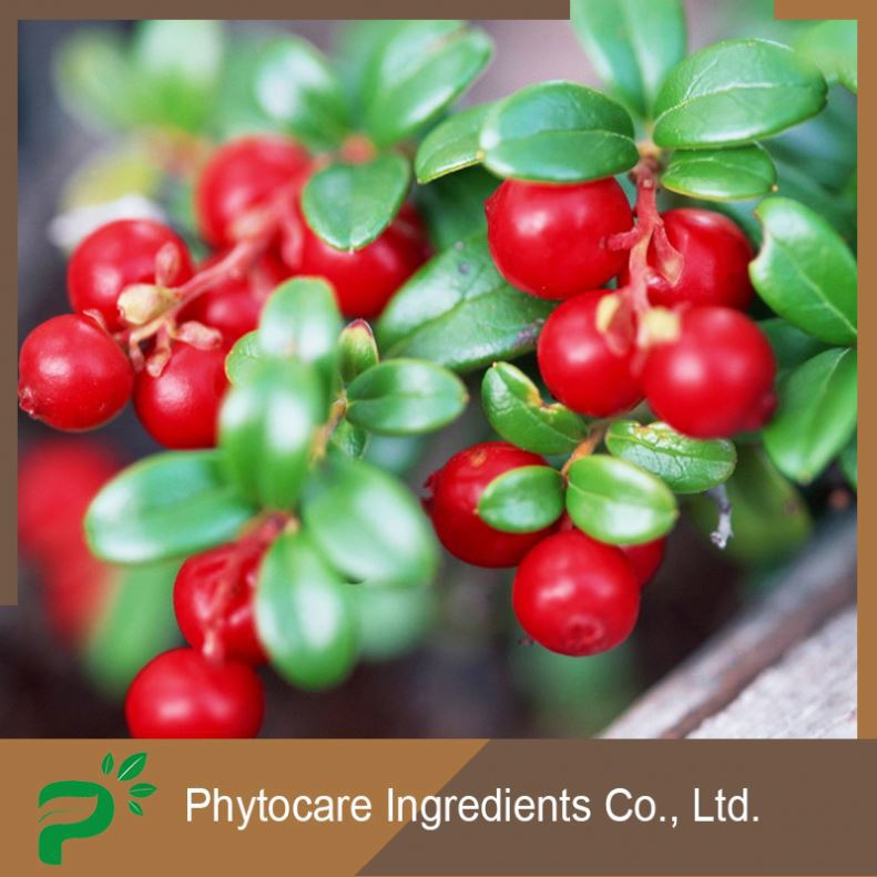 Performance pure plant source cranberry juice extract
