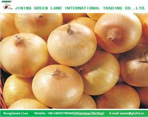 SUPPLY CHINA WILD CLEAN ONION VARIETY OF PACKAGES FOR YEARS
