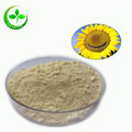 Pure organic sunflower lecithin/sunflower lecithin powder/lecithin