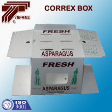 Corrugated Plastic Asparagus Packing Box Vegetable Tray